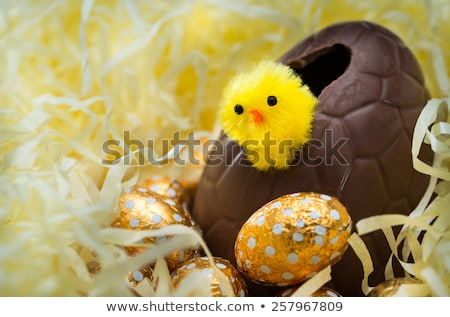 Stock photo: Easter Chick With Chocolate Easter Egg