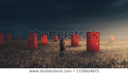 Ikilem Internet erkekler iş soru Stok fotoğraf © 4designersart