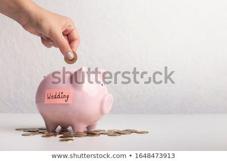 свадьба экономики розовый синий Piggy Bank Сток-фото © oersin