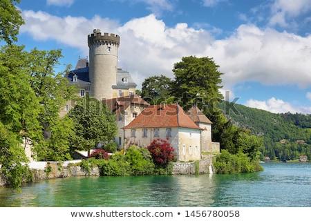 Tour de château Stock photo © xedos45