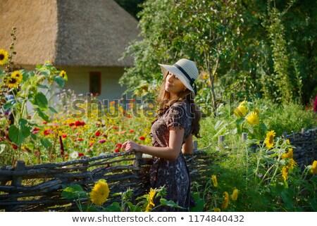 wicker fence stock photo © vrvalerian