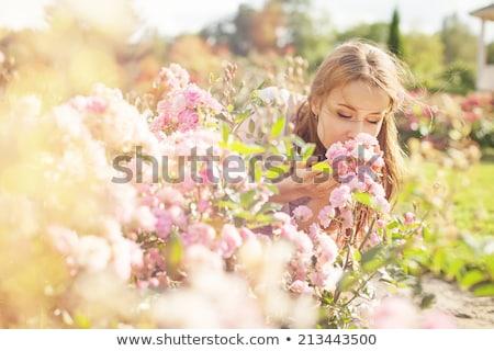 Girl enjoys the smell of roses Stock photo © OleksandrO