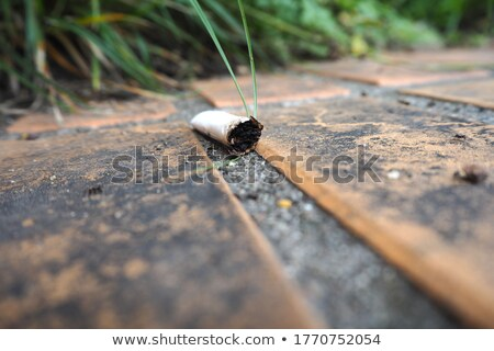 Cigarette extinguished against a white background Stock photo © wavebreak_media