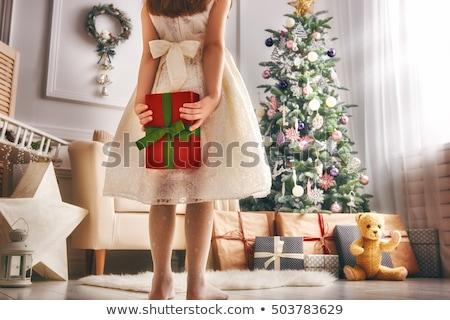 мало Рождества девушки Cute девочку Hat Сток-фото © Talanis