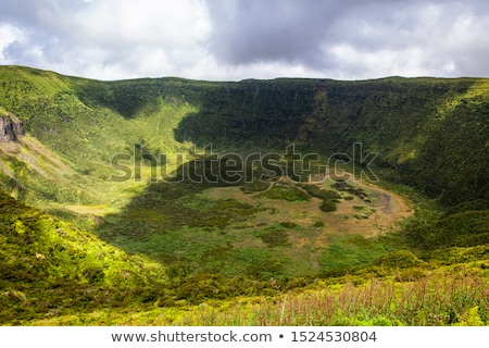 Ver vulcânico cratera ilha flor água Foto stock © dinozzaver