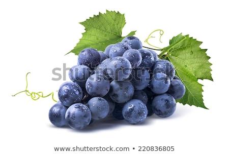 świeże winogron winorośl winnicy wina słońce Zdjęcia stock © gophoto