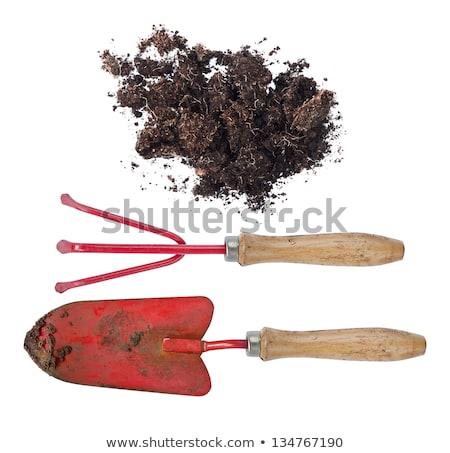 Használt kert szerszámok öreg rozsdás fém Stock fotó © vavlt
