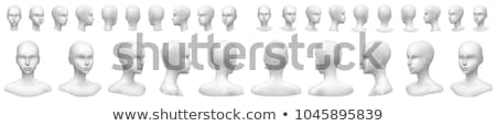 Hoofd vrouwelijke etalagepop profiel geïsoleerd witte Stockfoto © stryjek