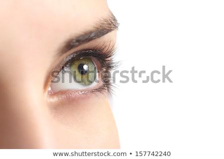 Mulher olhos mulher jovem olhos azuis nariz Foto stock © w20er