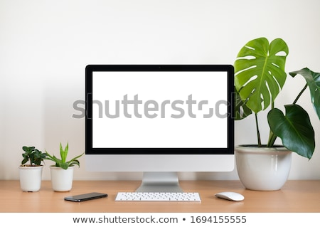 Computer with Monitor Keyboard and Mouse stock photo © fenton