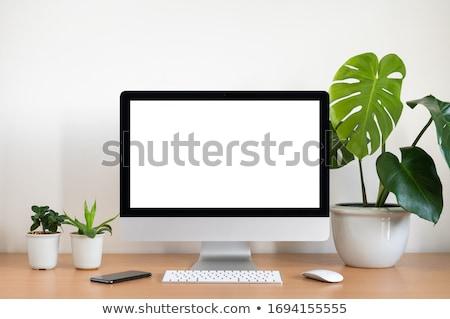 Photo stock: Clavier · souris · modernes · ordinateur · technologie