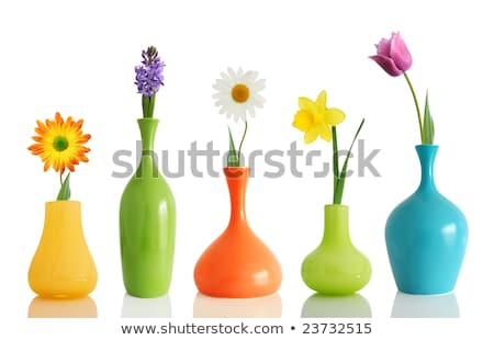 весенние цветы синий ваза изолированный белый весны Сток-фото © diabluses