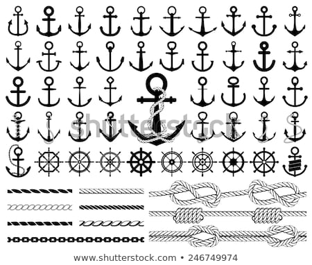vintage anchor with rope vector set stock photo © beaubelle