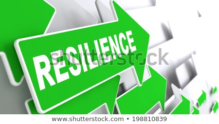 Resilience on Green Direction Arrow Sign. Stock photo © tashatuvango
