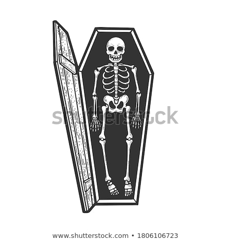 coffin Stock photo © adrenalina