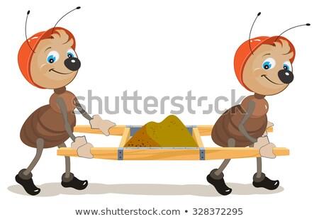 Ant builder due formiche sabbia illustrazione Foto d'archivio © orensila