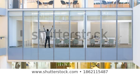 Rear View of a Businessman Raising his Fists Stock photo © ozgur