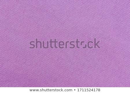 púrpura · denim · bastante · morena · blusa · shorts - foto stock © disorderly