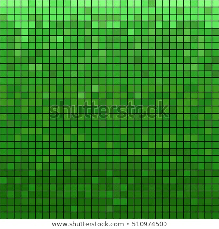 светло-зеленый Пиксели мозаика свет темно зеленый Сток-фото © romvo