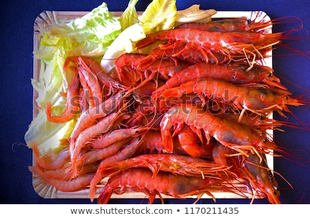 delicious raw langoustines stock photo © zhekos