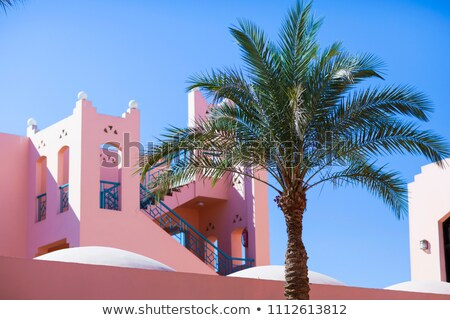 gebouw · palm · zee · stad · zon · landschap - stockfoto © sebikus