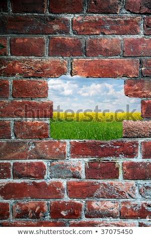 otwór · starych · murem · widoku · dziedzinie · niebo - zdjęcia stock © rufous