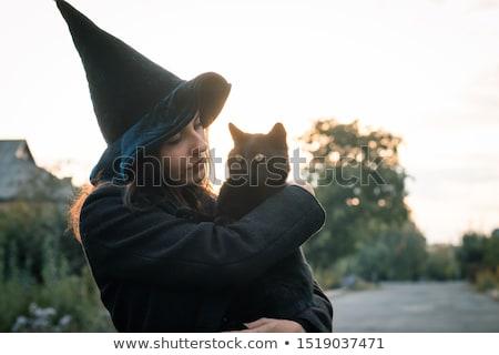 Halloween bruxa gato preto ilustração gato doce Foto stock © adrenalina