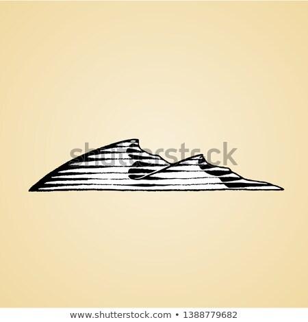 nosso · esboço · areia · estilo · desenho · mão - foto stock © cidepix