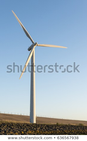 one windmill during twilight  Stock photo © compuinfoto