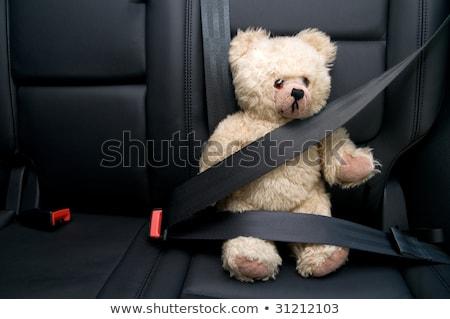 Teddybeer zitting gordel auto reizen Stockfoto © wavebreak_media