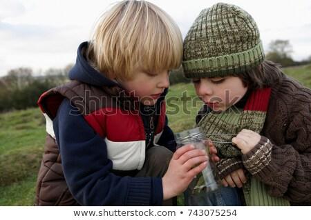Jar insecten kind leuk jonge Stockfoto © IS2
