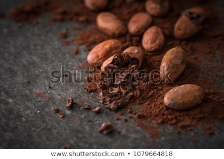 cacau · produtos · tradicional - foto stock © photo25th