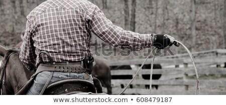 Zdjęcia stock: Cowboy Wearing Hat
