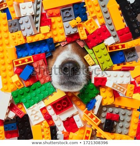 game many blocks  Stock photo © Olena