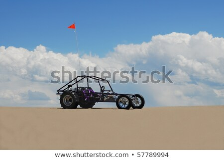Flag and buggies in desert Stock photo © Givaga