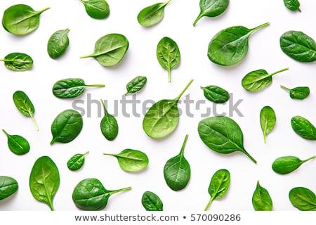 Fraîches épinards laisse blanche feuille légumes Photo stock © Digifoodstock