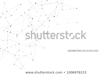 abstract geometric background with connected lines and dots stock photo © olehsvetiukha