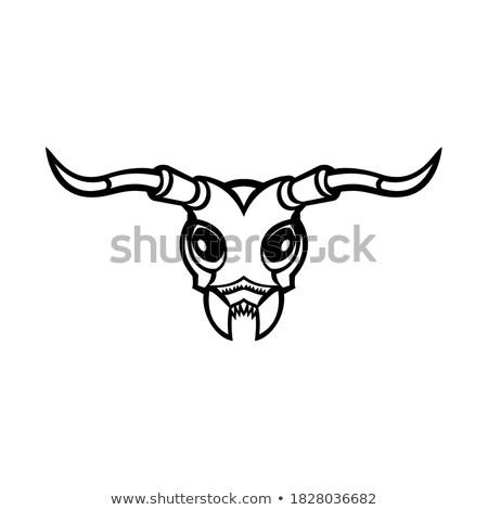 Besouro mascote ícone ilustração cabeça inseto Foto stock © patrimonio