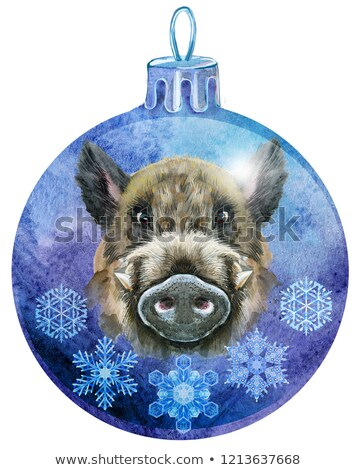 watercolor violet christmas ball with the image of a boar and snowlakes isolated on a white backgrou stock photo © natalia_1947