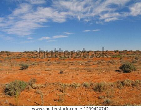 Ausztrál tájkép törött domb piros sivatag Stock fotó © lovleah
