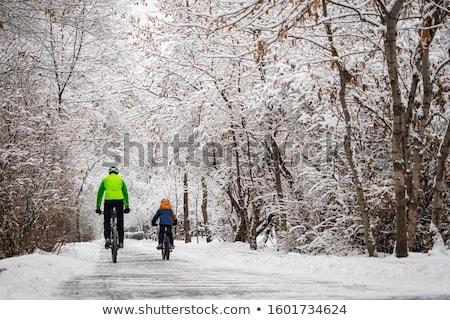Bikes in Winter Stock photo © Laks