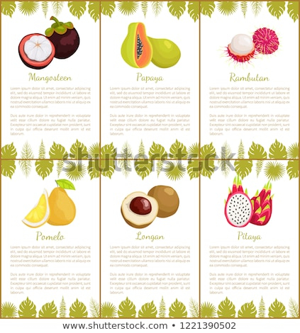 Pomelo and Longan Posters Vector Illustration Stock photo © robuart