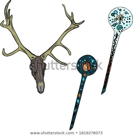 Magie os crânes bois symbole dieu Photo stock © jossdiim