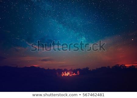 cartoon · noc · krajobraz · księżyc · Chmura · wektora - zdjęcia stock © colematt