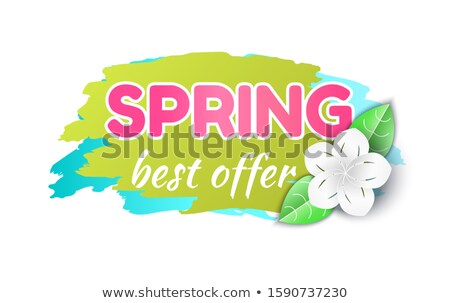 Spring Best Offer Reduction of Price Banner Icon Stock photo © robuart