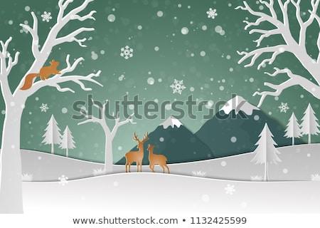 Рождества плакат дерево белку Сток-фото © balasoiu