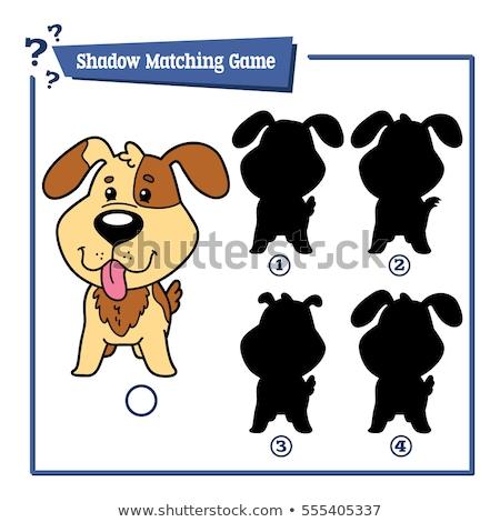 sombras · tarefa · desenho · animado · cães · ilustração - foto stock © izakowski