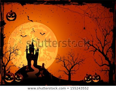 Halloween pompoenen huis volle maan abstract Stockfoto © WaD