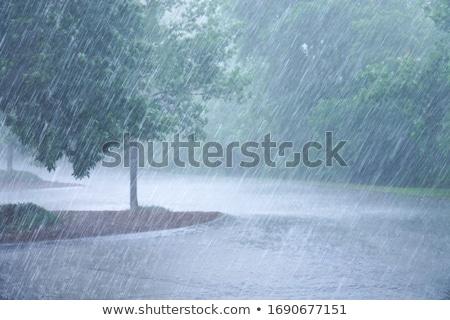 ağır · yağmur · şehir · trafik · yağmurlu · gün - stok fotoğraf © joyr