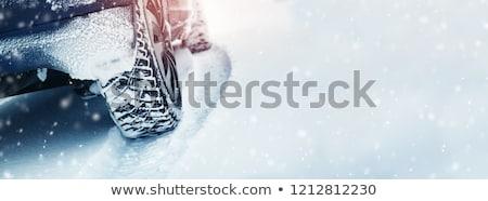 Winter storm auto weg sneeuw reizen Stockfoto © lalito